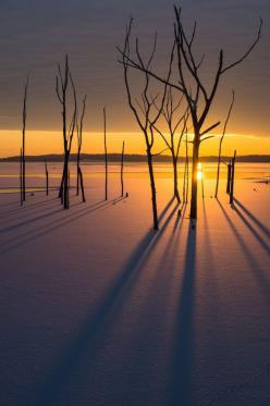 Sun rising over a frozen lake at Manasquan Reservoir in New Jersey, USA, photo by Dave Rogers