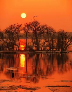 Sunset reflection - ©Все работы автора - http://photoclub.by/work.php?id_photo=325362