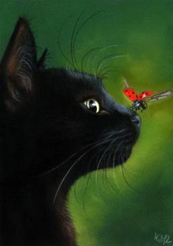 Black cat and ladybug By: Angela-Carmen Griehl-Groß: Kitty Cat, Animal Painting, Cat Painting, Black Cats, Art Cat, Pastel Painting, Blackcat