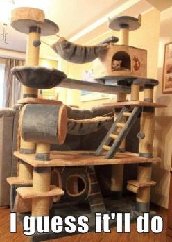 Kitty Dream House... I'll say! I wish I had room for this... my 5 furbabies would love it :): Cats, Kitty Cat, Crazy Cat, Cat Tree, Cat House, Cat Stuff, Cathouse
