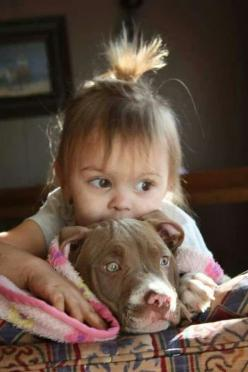 """""""I'll keep you safe, love you doggie!"""" facebook.com/sodoggonefunny: Cute Pitbulls, Pictures Of Kids, Best Friends, Baby Girl, Pets Pitbulls, Puppy, Pitbulls Puppies, Animal"""