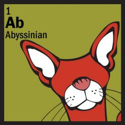 abyssinian in chemistry: Abyssinian Kitties, Dog Cat, Table Kitty, Things Abyssinian, Abyssinian Cats, The Cat Table