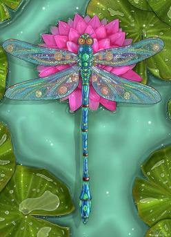 Dragonfly And Water Lily Print By Zdenek Sasek: Dragonfly Sasek, Butterflies Dragonflies, Dragonflies Butterflies, Tattoo Dragonfly, Water Lily, Dragonfly Prints, Dragonfly Artwork, Water Lilies, Libelulas Dragonsfly