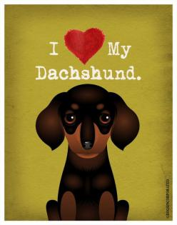 I Love My Dachshund I Heart My Dachshund I door DogsIncorporated: Dogs Puppies Pets, Dachshunds Rule, Door Dogsincorporated, Dogsincorporated Doxies, Doxie S, Weiner Dogs, Dachshund S, Mothers Dachshunds