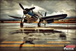 F4U Corsair - True Beauty