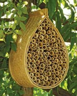 Mason bee House. Lovely pollinaters that are not aggressive, I want this bee house!