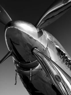 P-51 Mustang Photograph by John Hamlon - P-51 Mustang Fine Art Prints and Posters for Sale
