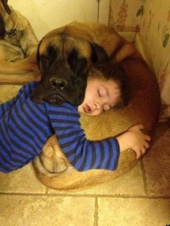Dogs and Kids- Because they are not just man's best friends - Love personified, in four-legged angels - Click the picture to see a series of wonderful kid/dog pics: Animals, Dogs, Sweet, Best Friends, Mutual Pillow, Pets, Puppy, Pillows, Kid