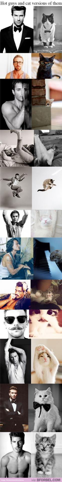 Hot guys and Cat versions of them! HOW CUTE IS THIS. Is its bad that I care more about the cats?: Giggle, Crazy Cat, So Funny, Hot Guys, Cats Win, Animal, Cat Versions, Cat Lady