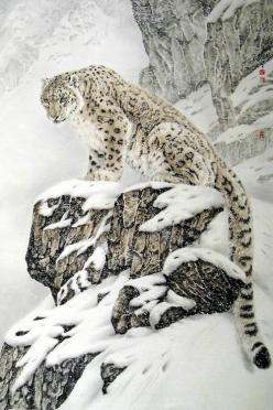 Beautiful Leopard in the Snow animals birds nature wildlife photography: Wild Cat, Wild Animal, Big Cats, Beautiful Animal, Wildcat, Favorite Animal, Frrrantic, Snow Leopard