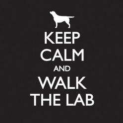 Keep Calm - Mens - Black – Labradors Worldwide Store: Labrador Retriever, Black Labradors, Labradors Quotes, Calm Labs, Labrador Black, Black Labs Quotes, Calm Labradors, Labrador Silver, Black Labrador Quotes