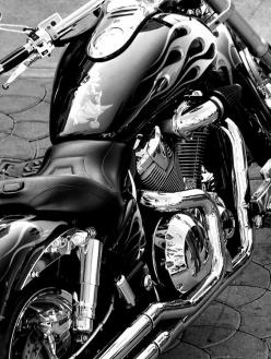 Not a Harley, not a Yamaha...yes maybe a Honda VTX. Black and White: Harley Davidson, Harley Black, White Photo, Cars Motorcycles, Black And White, Black White, Custom Bike