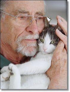 In light of my strong belief in the power of therapy animals, I am forced to make room for this cat among the dogs.: Cats, Animals, Friends, Pets, So True, Crazy Cat, Kitties, Kitty, Cat Lovers