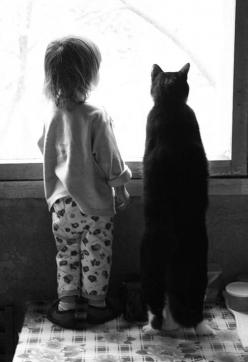 """""""The Watchers""""..... I love how the cat is almost as tall as her little human friend.: Cats, Animals, Best Friends, Window, Children, Kids, Baby, Photography, Black"""