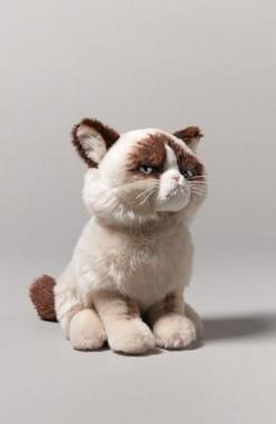 'Grumpy Cat' Stuffed Animal: Cats, Ideas, Gift, Animal Nordstrom, Grumpy Cat Stuffed Animal, Grumpycat, Products