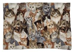 Cats Pillow Case: Decor, Pillow Cases, Cat, Cat Pillow, Crazy Cat, Products, Pillows, Cat Lady