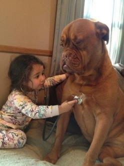 This patient pup that will play doctor to amuse this little girl. | 27 Dogs That Will Do Anything For Kids: Animals, Sweet, Dogs, So Cute, Pet, Funny, Friend, Kid