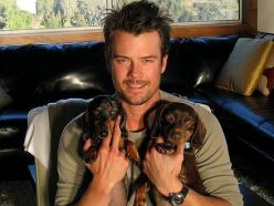 ALL the cool kids have them! ;) 35 Celebrities with Dachshunds - I Love Dachshunds: Eye Candy, Celebrity, Animals, Dogs, Pet, Doxie, Puppy, Josh Duhamel
