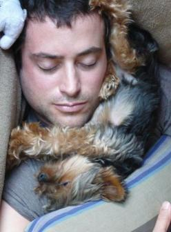 I've found my hubby & joseph sleeping like this a hundred times! they both love napping. Its so sweet....and they both snore too :p: Beloved Yorkies, Animals, Dogs, Friends, Pets, Yorkie Dog Pet, Puppy, Man, Medium