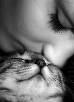 love you...: Cats, Kitty Cat, Animals, Sweet, Pet, Kitty Kiss, Black, Photography