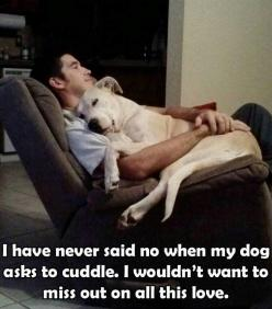Loving to cuddle no matter what: Doggie, Animals, Dogs, Pitbull, Pets, Puppy, Friend