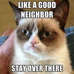 grumpy cat is a good neighbor - The cat's name has got to be Mrs. Wilson: