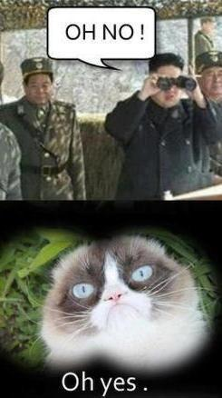 Grumpy cat meme...For more jokes funny and humor memes visit www.bestfunnyjokes4u.com/rofl-funny-pic-of-the-day-8/ Challenge this FREE game for Android and help feed Bunny. https://play.google.com/store/apps/details?id=gss.runningbunny: Funny Grumpy Cat M