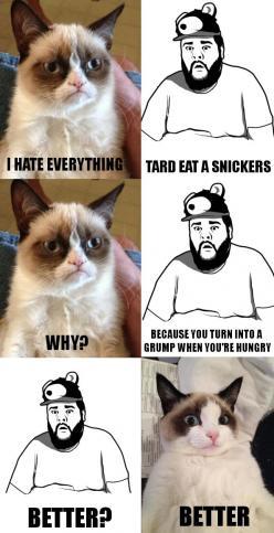 #GrumpyCat #meme For more Grumpy Cat stuff, gifts, and meme visit www.pinterest.com/erikakaisersot: Cats, Grumpycat Humor, Even Humor, Even Grumpycat, Grumpy Cat Meme, Gifts Memes, Cat Memes