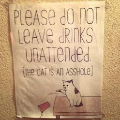 I need this sign to put on our kitchen table.: Cats, Asshole, Drinks Unattended, Funny Stuff, Leave Drink, Funnie, Animal