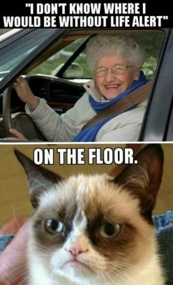 IM SORRY BUT THIS WAS TOO FUNNY NOT TO RE-PIN.  Grumpy Cat quote, humor, meme #GrumpyCat #Meme terrible AND hilarious m: Life Alert, Giggle, Floor, Funny Stuff, Funnies, Even Grumpycat, Grumpy Cat Meme