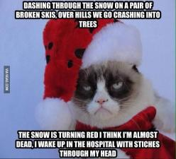 """Me: Merry Christmas, Grumpy Cat Grumpy Cat: What""""s so merry about it /                                                               / (: Holiday, Animals, Grumpy Kitty, Grumpycat, Funny Stuff, Grumpy Cat Christmas, Grumpy Cats, Merry Christmas"""