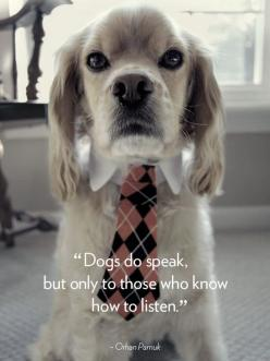 16 Dog Quotes That Will Melt Your Heart: Animal Quotes, Quotes About Dogs, Pet, Puppy Quote, Dog Quotes, Fur Babies