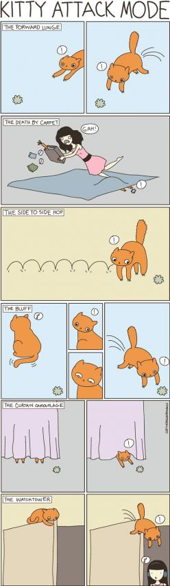 Cat Vs. Human is a great blog and comic!  Shelly is guilty of pretty much all of these...: Cats, Animals, Attack Modes, Funny, Crazy Cat, Kitty Attack, Cat Lady
