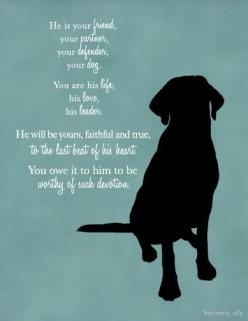 Custom Dog Quote Wall Art Print Dog Quote Pet by sincerelyally: Dogs Quote, Labrador Retriever, Pet, Quotes Dog, Black Lab Quotes, Dog Quotes, Labrador S, Black Labs