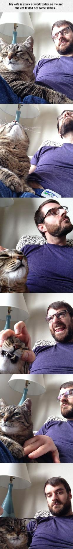 Human And Cat Selfie Time: Funny Pets, Cats And Men, Cat Selfie, Cit Cats, Men And Cats, Cat Things, Cat Funnies, Cats Friends Human
