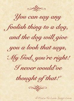 True.   ...........click here to find out more     http://googydog.com: Animals, Bestfriends, Doggies, Truth, Doggie Stuff, True Dogs, Dog Quotes, Dogquotes, Dog Stuff