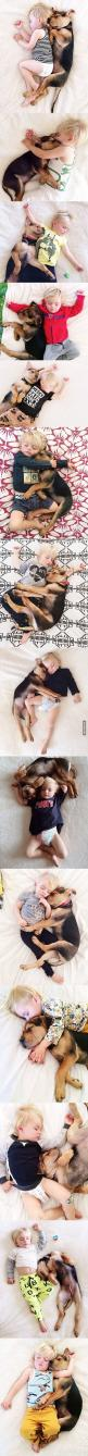 A mother photographs her son and his puppy taking a nap everyday. I would love to see more pictures of this precious boy and his dog as they grow together. These pictures are beautiful. Thank you for sharing them.  XO: Baby And Dog, Mother Photographs, Pu