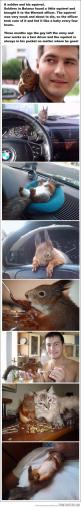 A soldier and his squirrel - This is the cutest ever!: Animals, Cat, Sweet, Soldiers, Squirrels, Baby Squirrel, Pet Squirrel, Pets