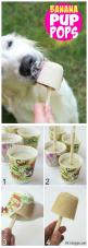 Banana Pup Pops - A delicious homemade creamy popsicle that your dog will love! Delicious and good for them too!: Doggie, Pup Pops, Homemade Creamy, Dog Popsicles Recipe, Dogs Pets, Furbabies, Creamy Popsicle, Delicious Homemade, Animal