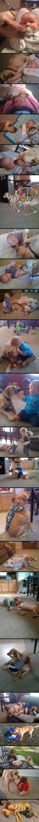 Best friends for 2 1/2 years. My heart just melted: Sweet, Best Friends, Pet, My Heart, Baby, 1 2 Years, Dog, Animal, Kid