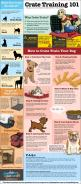 Crate trainings dos and dont's for dog owners [Infographic] -Training your dog to use a crate can help better prepare your canine friend for travel and give him a safe space. -Posted Mar 13, 2014: Dog Training, Crate Training, Dog Crates, Training 101