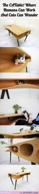 Finally A Way To Keep Cats From Wandering Onto Your Laptop… The CATable!: Cat People, Cat Coffee Table, Idea, Cats 3, Dining Table, Table Cats, Baby Cats