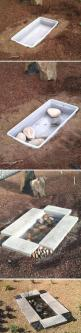Using a storage tub as the basin of a tiny in-ground pond, no plastic sheeting/liner needed.: Ideas, Water Gardens, Water Features, Garden Water, Outdoor, Contemporary Gardens, Diy Projects
