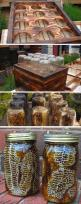 Do It Yourself Craft Ideas – 48 Pics: Idea, Bees, In A Jar, Diy Beehive, Mason Jars
