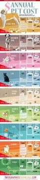 Fresh on IGM > Annual #Pet Cost: Cats, Dogs, Birds, Fishes, Rabbits are some of the most popular pets we like to host. Its good to know how much it costs on average owning and caring of a pet per year. Some of the typical expenses like food, medical tr