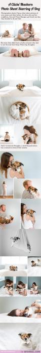 Lol I love this!: New Puppy Photoshoot, Newborn Puppy Photoshoot, Newborn Photo, Born Photos, Baby Pictures, Funny Dog Pictures, Photos Starring