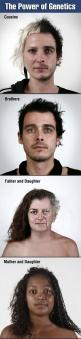 The Power of Genetics (click to enlarge for photos. These are amazing): The Power Of Genetics, Genetics Fascinating, Genetics Fucking, Genetics Click, Genetics Whoa, Cool Genetics Face Family Dna, Health Dna Genetics, Genetics Art, Amazing The Power