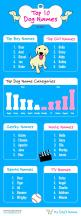 Top 10 Dog Names for 2014 from mydogsname.com. We compiled user favorites and had to share. #3 was quite a surprise!: Pet Infographics, Http Mydogsname Com, Dogs Names, Top 10 Dog Names For 2014 Png, Dogs Puppies, Top Dog Names 2015, Dogs Healthcare, Dog