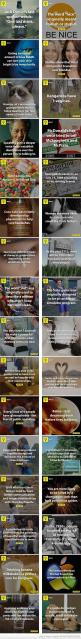 30 Facts… wonder if they're all true: 30 Facts, Interesting Fun Facts, Interesting Facts, Funfacts, Life Hacks, Random Stuff, Random Facts, 8Fact