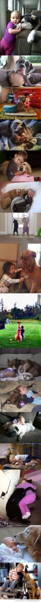 Cutest thing ever: Doggie, Sweet, Dogs And Kids, My Heart, Puppy, Baby, Big Dogs, Friend, Animal